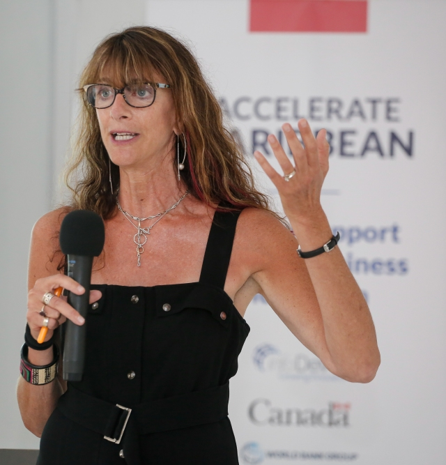 EntrepreneurshipWorkshopValerie Fox_June2016